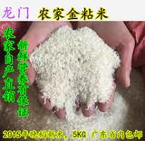 2015年新米龙门农家大米不抛光金粘油粘米农家自产5kg包邮