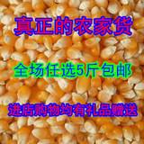 2015农家自种 新玉米粒 爆米花专用玉米 杂粮 小玉米粒 黄玫瑰