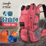 奥斯格户外登山包男40L45L旅游旅行双肩包女徒步露营防水背包背囊