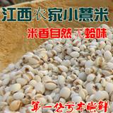 江西有机小薏米 正宗高山糯薏米仁薏仁米 祛湿杂粮新货3斤包邮