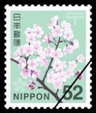日本信销邮票 新面值普票 普通邮票 樱花编号 709