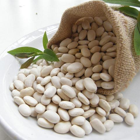 什么能�:j�9�hy�(:-*:a�_白豆有什么能做成豆浆喝吗