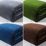 外贸毛毯加厚珊瑚绒毯床单双人冬季法兰绒毯子单人宿舍拉舍尔盖毯