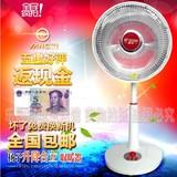 扬子小太阳落地取暖器大号暗光电暖气居浴立式家用节能升降暖风机