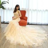 婚纱礼服2016新款冬季一字肩新娘大拖尾韩式香槟色收腰修身鱼尾女