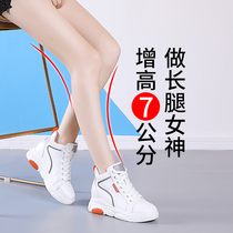 Within the increased white shoes womens 2019 autumn and winter burst new Wild net red was thin casual shoes plus velvet high-top shoes