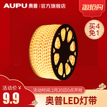 OPP lighting LED lamp with 220V living room decorative ceiling flexible waterproof outdoor ultra-bright white sticker light strip