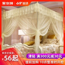 Mosquito net 1 5 M 1 8m bed household 1 2 Princess wind floor stand encryption thickened three-door pattern account 2 0