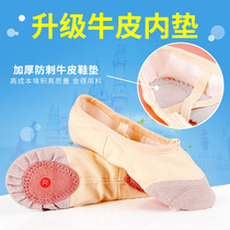 Childrens Dance shoes ballet shoes female adult dancing shoes cat claw shoes soft bottom anti-slip thickening practice shoes girl