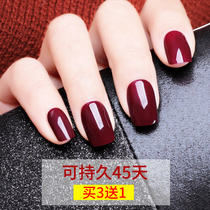 Cherries red nail polish glue 2019 autumn and winter New Light Treatment Nail shop dedicated Black Cream Red popular color