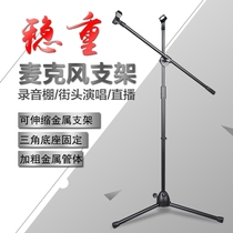 LY18 handheld condenser microphone microphone stand floor professional singing K dance stage vertical wheat rack shelf