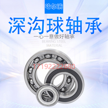 Harbin Bearing 6200 6201 6202 6203 6204 6205 6206 6207ZZ 2Z 2RS.