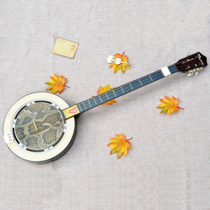Qin Qin musical instrument genuine snakeskin plucked three-string professional playing Plum Flower Piano drama accompaniment National three Xuan piano