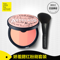 South Korea too cool for school art class three-color gills red powder cake makeup Brush Set Decoration plate
