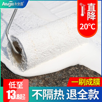 Roof roof floor floor sunscreen reflective waterproof insulation paint material roof iron color steel tile Sunless paint