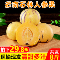 Gan Fuyuan Yunnan stone forest ginseng fruit 8 pounds of fresh seasonal fruit life round fruit seasonal FCL wholesale