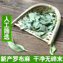 Luo linen apocynum leaves artificial selection of tea apocynum tea 500g new goods no impurities clean pound