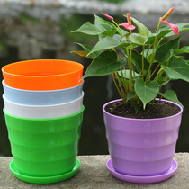 Horticultural plastic resin flowerpot color high light horizontal threaded flowerpot Imitation ceramic multi-meat flowerpot delivery Tray