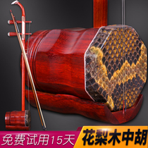 Safflower pear mahogany Hu erhu musical instrument erhu test grade learning piano factory direct sales
