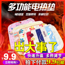 Heating cushion office home warm warm chair plug electric pad pet small electric blanket multi-functional mattress