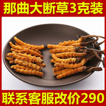 Authentic Tibet that song cordyceps 3g head of grass fresh cordyceps high altitude large broken grass dry gift box