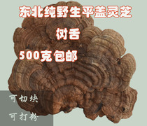 Changbaishan wild Ganoderma lucidum flat cover Ling branch tree tongue genuine 500 grams of natural green sesame whole large piece of sliced powder