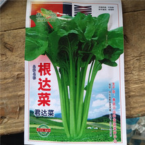 Large leaves of Brown cabbage pot seed seed root vegetables four seasons sowing farm garden vegetable flower pot seed seed
