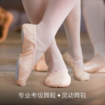 Dance of love dance shoes womens soft bottom training shoes adult ballet shoes cat claw shoes childrens body elastic two-soled shoes