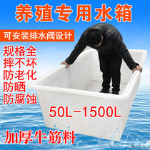 Thickened beef tendon plastic water tank rectangular household water tank large aquaculture tank fish turtle basin storage barrels