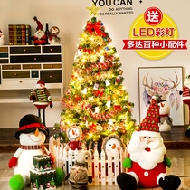 Christmas tree decorations shopping mall shop decoration Christmas tree Package 1 5 M 1 8 M 2 1 M 3 m 60cm ornaments
