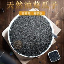 Parrot snack training reward food weibi parrot feed pet bird bird food feed snacks black melon seeds