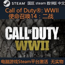 PC genuine call of Duty Call of Duty: WWII COD14 steam