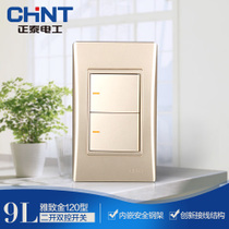 CHiNT Electric 120 NEW9L safety steel wall switch socket golden two open double control
