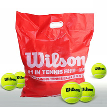 Authentique Wilson gagnera le tennis Wilson balle dentraînement sans pression balle Dentraînement WRT13600