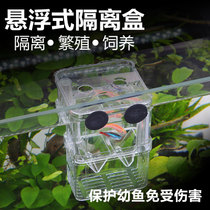 Sensen Peacock fish breeding box juvenile fish isolation box fry egg laying device tropical fish hatching box acrylic hatching box