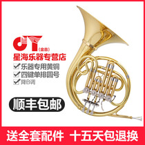Xinghai gold tone JYFH-E120G B-tone four-button single-row gold round musical instrument