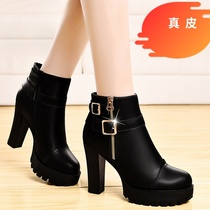 High-heeled single shoes with coarse 2019 New fine plus Velvet Wild waterproof Taiwan womens shoes leather autumn and winter ladies shoes