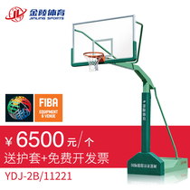 Jinling sports standard adult competition basketball rack indoor and outdoor mobile single arm basketball rack YDJ-2B 11221