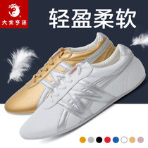 Daye Hengtong fashion martial arts tai chi shoes female professional training soft shoes male Tai Chi boxing children practice competition shoes