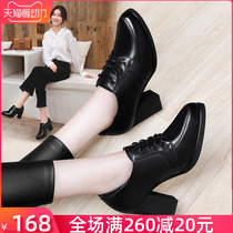 Leather shoes 2019 new autumn and winter Leather Single shoes plus cashmere with wild ladies high heels rough heel work shoes