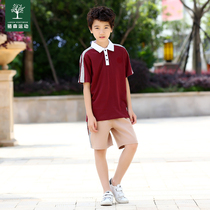Dongguan City Changping town unified primary school uniforms cotton summer autumn winter clothing Changping primary school uniforms suit