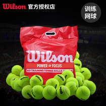 Wilson training tennis single practice training professional Wilson genuine competition tennis