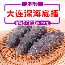 Top grade tribute Dalian sea cucumber light dry goods 250g gift boxed non-instant bottom sowing wild Liaoning ginseng sea cucumber fresh sea infiltration