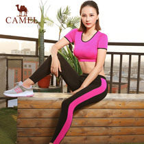 Camel sports suit spring and summer 2019 new yoga clothing female short-sleeved fitness clothes yoga sports two-piece tide