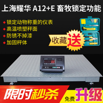 Shanghai Yaohua floor scales 1-3 ton weigher electronic floor Scales said pig small floor scales 1-3 tons with fence