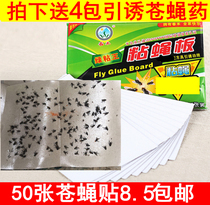 50 sticky paper flies fly stickers off the fly artifact cage strong sticky small flies mosquitoes fly strip stickers