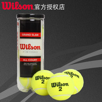 Wilson will win new full-size tennis 3 pack CRAND SLAM ALL COURT 3 BALL