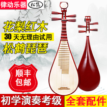 Pine Crane Pipa musical instrument Pipa Adult Beginners beginners practice playing Test childrens Pipa Rosewood Pipa piano