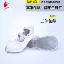 Red dance shoes Korean shoes dance shoes soft bottom canvas training shoes female ethnic dance shoes elastic flat shoes 10053 leather