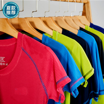 Quick-drying T-shirt mens summer outdoor short-sleeveloose student sports running breathable quick-drying women custom-made LOGO.